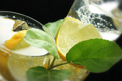 Lemon and Ice Cubes in Soda Water Stock Images