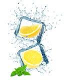 Lemon and ice cubes splash Stock Images