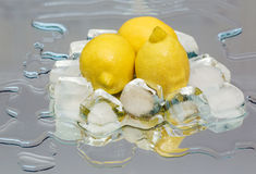 Lemon, ice Stock Photo
