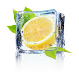 Lemon in ice isolated on the white background Stock Photo