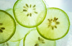 Lemon in ice Royalty Free Stock Image