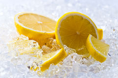 Lemon with ice Stock Photography