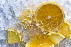 Lemon with ice Royalty Free Stock Photos