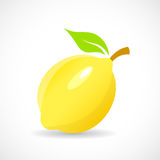 Lemon  icon illustration Stock Photos