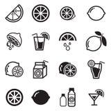 Lemon icon. Vector illustration Graphic Design royalty free illustration