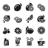 Lemon icons vector illustration