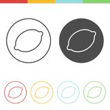 Lemon icons vector. Vector set of lemon icons in thin line style Stock Image