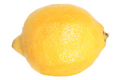 Lemon isolated Royalty Free Stock Image