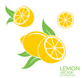 Lemon. Isolated fruit on white background Royalty Free Stock Photo
