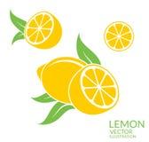 Lemon. Isolated fruit on white background Royalty Free Stock Photo