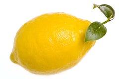 Lemon isolated with leaf. On white background Royalty Free Stock Photo