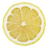 Lemon isolated on white. Lemon slice isolated on white background with clipping path royalty free stock photo