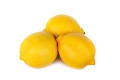 Lemon isolated on white background Royalty Free Stock Photos