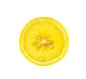 Lemon isolated on a white background Royalty Free Stock Photography
