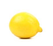Lemon isolated on a white background Royalty Free Stock Image