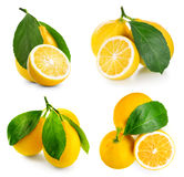 Lemon isolated on white Royalty Free Stock Photos