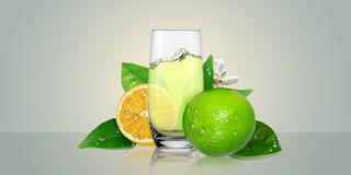 Lemon juice glass and lime fruit. Stock Photography