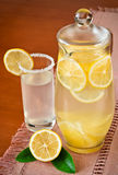 Lemon juice in a jug and fruit Stock Images
