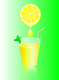 Lemon juice and mint. Stock Image