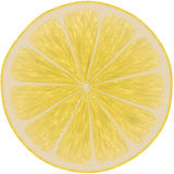 Lemon juice slice. Stock Photos