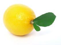 Lemon. Juicy lemon on a white background Stock Image