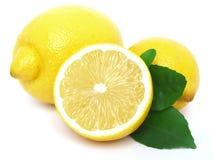 Lemon. Juicy lemon on a white background Stock Photo