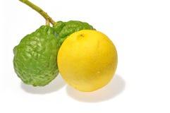 Lemon and Kaffir Lime Royalty Free Stock Images