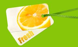 Lemon label. On green background Royalty Free Stock Photos