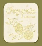 Lemon Label Stock Photo