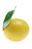 Lemon with Leaf Royalty Free Stock Photos