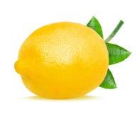 Lemon and leaf Stock Photo