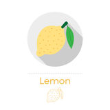 Lemon with a leaf vector illustration. In flat design style with long shadow. Round shape, isolated on white background. Thin line icon included Stock Image