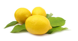 Lemon with leaves Royalty Free Stock Photography