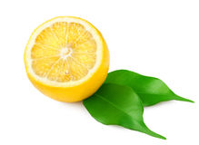 Lemon with leaves Stock Photography