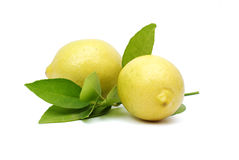 Lemon with leaves Royalty Free Stock Photo