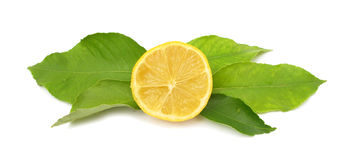 Lemon with lemon leaves Royalty Free Stock Photos