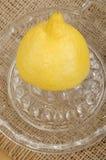 Lemon on a lemon squeezer Royalty Free Stock Photography