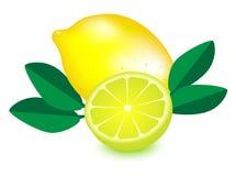 Lemon , lemon vector, lemon with green leaf on white background Stock Photography