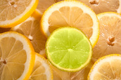 Lemon and lime. Slices of lemon and lime Royalty Free Stock Photos