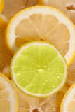 Lemon and lime. Slices of lemon and lime Royalty Free Stock Image