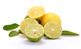 Lemon and lime. On isolated background stock image