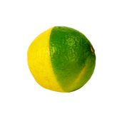 Lemon and lime. Mixed, isolated on white background Royalty Free Stock Photography