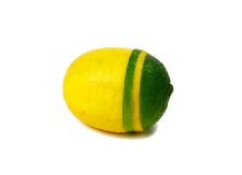 Lemon and lime. Mixed, isolated on white background Royalty Free Stock Photos