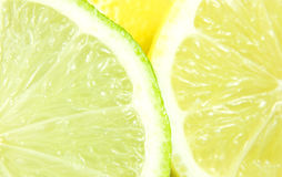 Lemon and lime. Close-up of lemon and lime slices Stock Photography