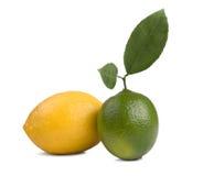 Lemon and lime. Image of Fresh lemon and lime isolated on white background royalty free stock photos