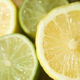 Lemon and Lime. Fresh Lemon and Lime Photograph Royalty Free Stock Photography