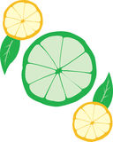 Lemon & Lime. An Illustration of sliced citrus.  Also in .ai file Stock Photo