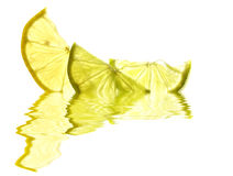 Lemon and Lime. Slices, backlit and reflected royalty free stock images