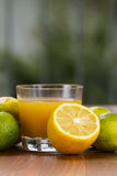 Lemon and Lime. Glass with juice Royalty Free Stock Images