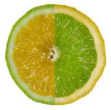 Lemon and Lime. A conceptual shot of a lemon and lime, isolated on a white background royalty free stock images